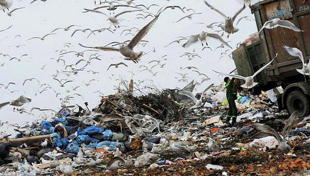 В двух километрах от Щучинска продолжает функционировать полигон твердых бытовых отходов,