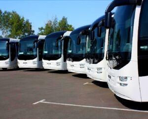 Бесплатные автобусы для туристов запустят в Боровом на Наурыз