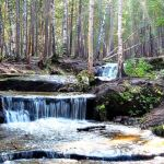 Экскурсия Боровое «В гости к природе»
