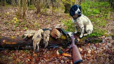 Сезон охоты в Казахстане